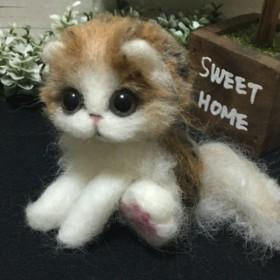 羊毛フェルト スコティッシュ子猫