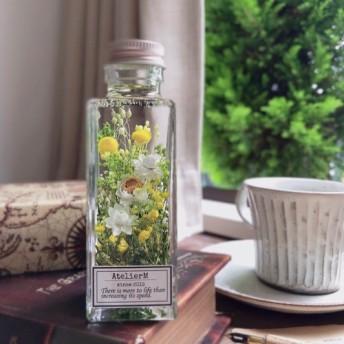 ハーバリウム square bottle ボトルの中の花畑 アンモビューム