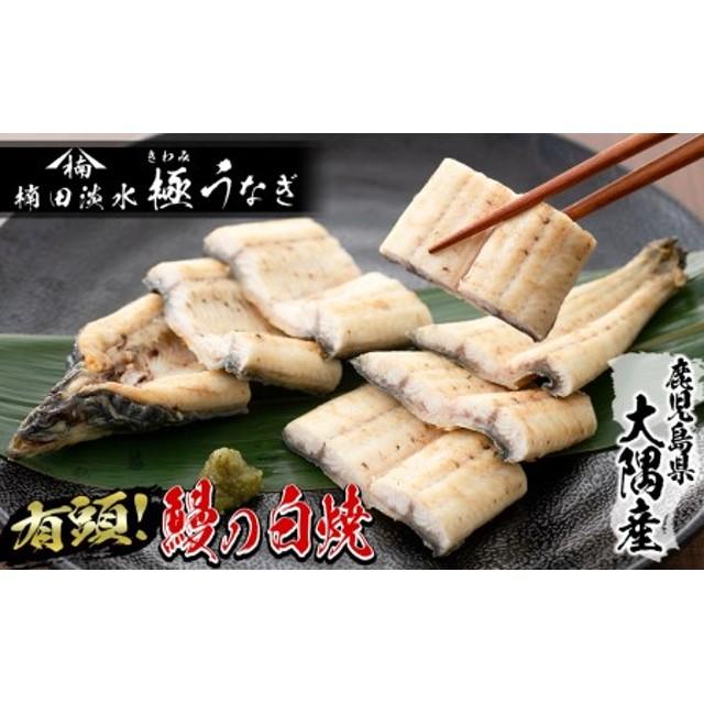 楠田の極うなぎ白焼き超特大1尾