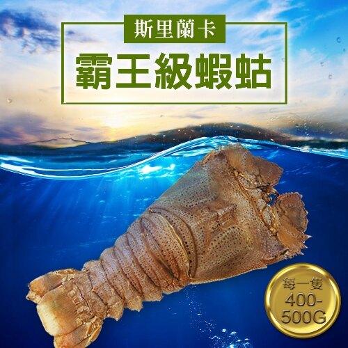 【築地一番鮮】斯里蘭卡巨無霸蝦蛄(400g/隻)-任選