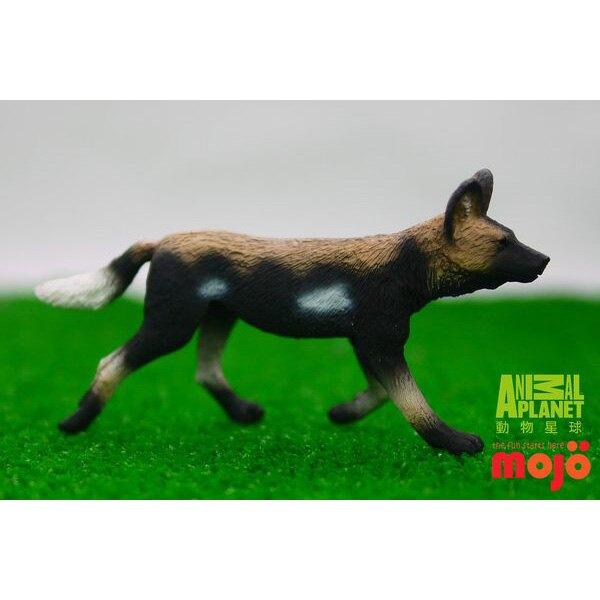 【MOJO FUN 動物模型】非洲獵狗 387110
