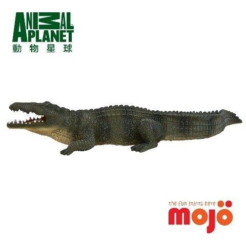【MOJO FUN 動物模型】尼羅鱷 387107