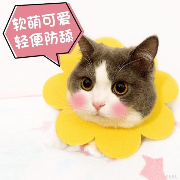 貓咪伊麗莎白太陽花項圈輕軟口水巾家用泰迪頭套貓脖圈寵物防舔恥辱圈 PA4008『紅袖伊人』