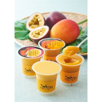 サラマンジェフ 限りなくマンゴーに近いマンゴープリン&トロピカルプリン各4個入