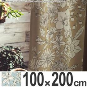 カーテン 遮光カーテン スミノエ くまのプーさん パルテール 100×200cm ( 送料無料 ディズニー プーさん ドレープカーテン Disney