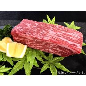 【佐賀牛】モモブロック(タタキ・ローストビーフ・焼肉等)500g(モモブロック500g)