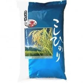 【先行受付・数量限定】【令和元年産新米】コシヒカリ10kgお米マイスター厳選