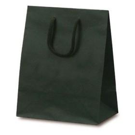 ベルベ 紙袋 1026 手提袋 T-2 カラークラフト グリーン 1026 1包:100枚(10×10) (直送品)