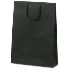 ベルベ 紙袋 1034 手提袋 T-8 カラークラフト グリーン 1034 1包:100枚(10×10) (直送品)