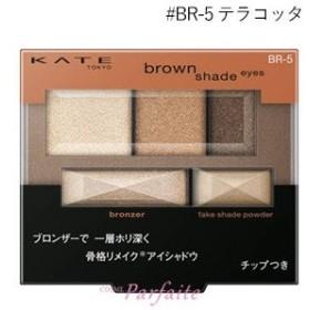 アイシャドウ ケイト KATE ブラウンシェードアイズN #BR-5 テラコッタ 3g メール便対応