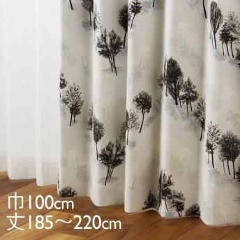カーテン ドレープ ブラック 形状記憶 遮光2級 ウォッシャブル 巾100×丈185〜220cm TDOS5212 KEYUCA ケユカ