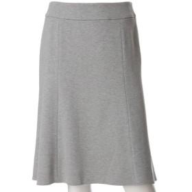 CLEAR IMPRESSION / 洗えるAラインスカート