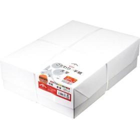 日本製墨書遊 こだわりの半紙 書聖1,000枚入り SHKP-5000 1セット(1箱(1,000枚入)) (直送品)
