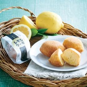 【婦人画報】大人なレモンケーキ 5個入り2箱