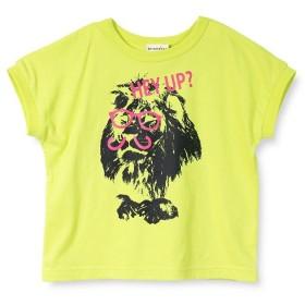【30%OFF】 ブランシェス ライオングラフィック半袖Tシャツ(90~150cm) レディース ライム 90cm 【branshes】 【セール開催中】