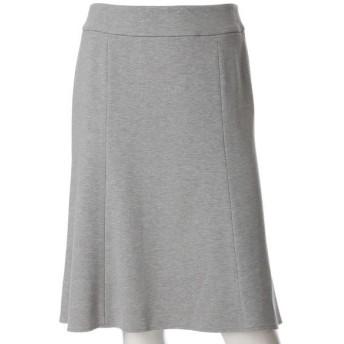CLEAR IMPRESSION / クリアインプレッション 洗えるAラインスカート