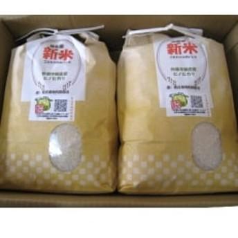 新庄産 ちりめん米 ひのひかり 精米5kg×4袋