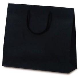 ベルベ 紙袋 1038 手提袋 T-6 カラークラフト ブラック 1038 1包:100枚(10×10) (直送品)