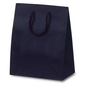 ベルベ 紙袋 1025 手提袋 T-2 カラークラフト ネイビー 1025 1包:100枚(10×10) (直送品)