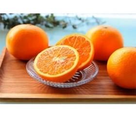 主井農園の高級清見オレンジ (5Kg 青秀)
