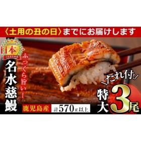 鹿児島県産うなぎ蒲焼名水慈鰻 特大3尾