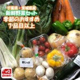 野菜セット 7品目以上 千葉県産 ・ 茨城県産 旬 詰め合わせ 産直野菜 新鮮 採れたて クール便代込 送料無料 (一部地域は別途送料がかかり