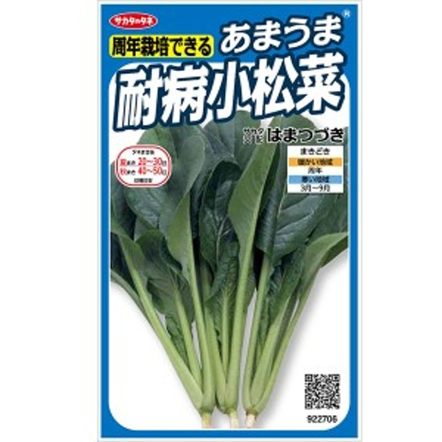 サカタのタネ あまうま耐病小松菜 はまつづき