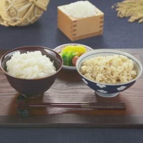 大島社長の魚沼産パックご飯白米&玄米計16個