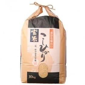 令和元年産 石川県能登産こしひかり 玄米10kg(10kg×1袋)