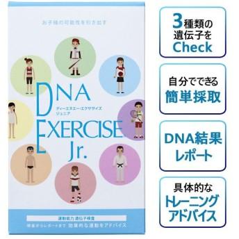 DNA EXERCISE Jr. 子ども用運動能力遺伝子検査キット 口腔粘膜用 潜在運動能力診断 遺伝子レベルのスポーツジャンル診断
