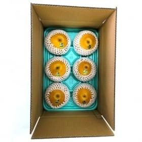 栃木県産JA佐野「にっこり(梨)」、1箱・5~8個入り・1果の基準重量(650g~1,000g)