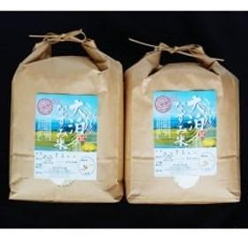 【令和元年産】大泊なずみ米 10kg(5kg×2袋)