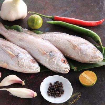 【上野物產】野生白口魚 x8隻(135g土10%/隻)
