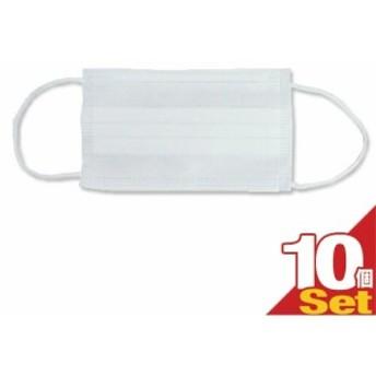 【あす着 ポスト投函!】【送料無料】【風邪・インフルエンザ対策】業務用 サージカルマスク(Surgical Mask) レギュラー×10枚セット ‐