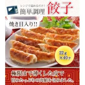 餃子(焼き目入り) 880g(22g×40ヶ)