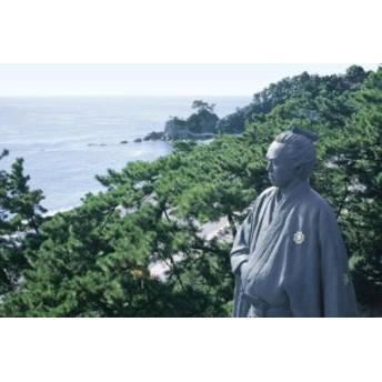 1000ピース めざせ!パズルの達人 太平洋を望む龍馬像 桂浜 (50x75cm)