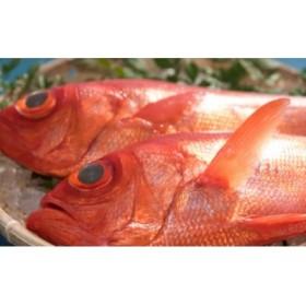 超希少 特大高級金目鯛1尾(鮮魚