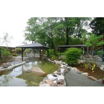 杉戸天然温泉 雅楽の湯 入館ペアチケット