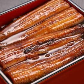 浜松・浜名湖 うなぎ蒲焼2人前(110gX2) 干物・漬魚・うなぎ・魚卵