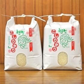 【数量限定】2019年産白子町産コシヒカリ20kg