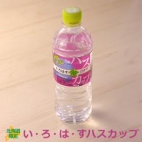 北海道限定 い・ろ・は・す ハスカップ 24本入り555ml コカコーラ製 送料無料 いろはす 水