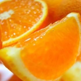 有田育ちの濃厚清見オレンジ 約5kg(1箱)