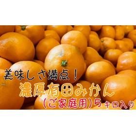 美味しさ満点!濃厚有田みかん5kg【ご家庭用/サイズ混合】(1箱)