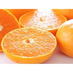 柑橘の王様 せとか (ご家庭用)(セット)