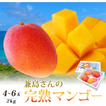 フルーツむらはた 沖縄宮古島産 兼島さんの完熟マンゴー 約2kg (4~6個) 果物・野菜
