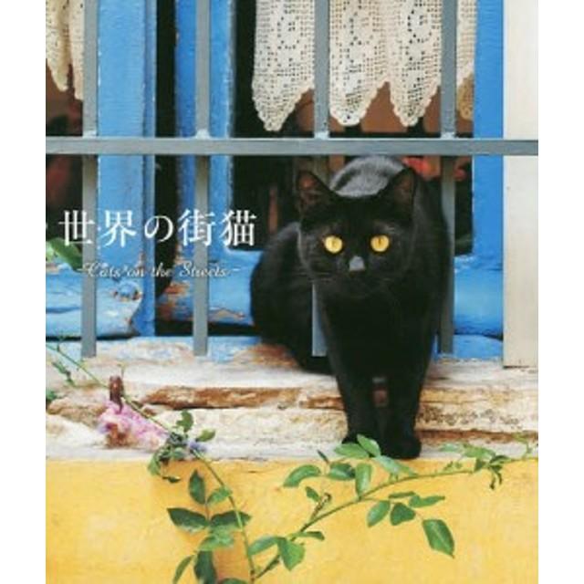世界の街猫/パイインターナショナル