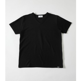 【AZUL BY MOUSSY】ボーダージャガードVネックTシャツ BLK