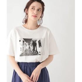 (studio CLIP/スタディオクリップ)USAコットンフォトプリントTシャツ/ [.st](ドットエスティ)公式