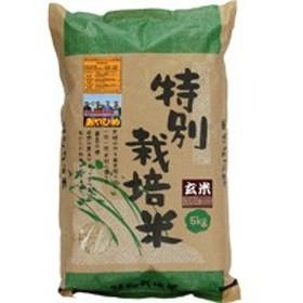 30年度産 特別栽培米・新篠津あやひめ 玄米(5kg)【ムソー】