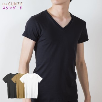 GUNZE グンゼ the GUNZE(ザグンゼ) 【STANDARD】VネックTシャツ(V首)(メンズ)【まとめ買い対象】 スキンベージュ LL